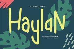 Web Font Haylan - A Handdraw Fancy Font Product Image 1