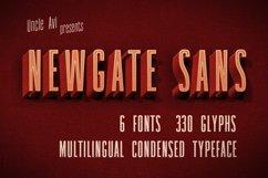 Newgate Sans Product Image 1