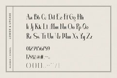 Absolute - Modern Serif Product Image 6