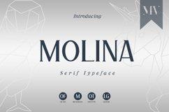 Molina Serif Font Product Image 1