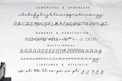 Natassya//a handwritten font script Product Image 6