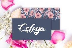 Azala   Style Script Font Product Image 2