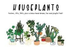 Houseplants Bundle Product Image 1