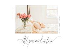 Audrey & Reynold - Luxury Script Product Image 3