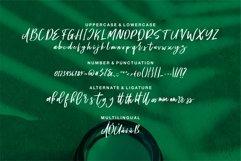 Web Font Sympathy - A Handwritten Script Font Product Image 5