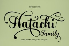 Fresh Bundles Font Script Happy New Year Product Image 4