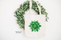 Watercolor succulents set Product Image 3