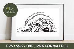 Cockapoo, Cavapoo, Goldendoodle Doodle dog mom svg Product Image 2