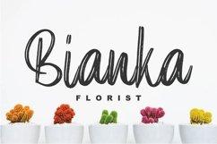 Elpanas - Beauty Brush Script Product Image 2