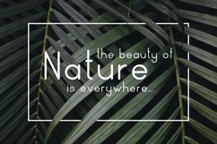 Nature Display Line Font Product Image 3