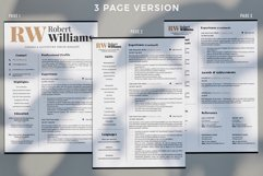 3 Page Professional Resume. Accountant Sales Resume, CV Product Image 3