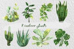 Watercolor Indoor Plants Clip Art Set Product Image 2