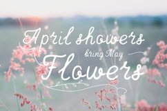 April—handwritten font Product Image 5