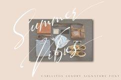 Carllitos // Luxury Signature Font Product Image 2