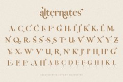 Vicky Christina - Chic & Stylish Ligature Serif Font Product Image 6