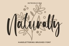 Web Font Naturally - Handlettering Brushed Font Product Image 1
