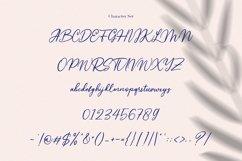 Monnolitic Casual Signature Font Product Image 10