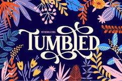 Tumbled Serif Font Product Image 1