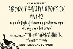 Web Font Methane - Beautiful Handwritten Font Product Image 4