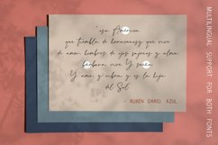 Invisible Beauty. Chic Duo Font. Product Image 5