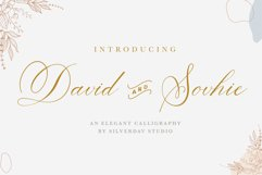 David and Sovhie - Elegant Calligraphy Font Product Image 1