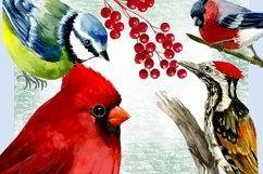 Forest birds watercolor clipart, Red cardinal. Product Image 4