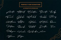 Robertson  Charming Signature Font Product Image 7