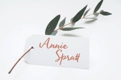 Sellaria - Handwritten Font Product Image 3