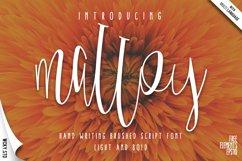 Malloy Font +Elements Product Image 1