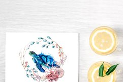 Sea Turtle Ocean Wildlife PNG Sublimation Design Product Image 2