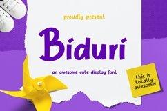Web Font Biduri Display Font Product Image 1