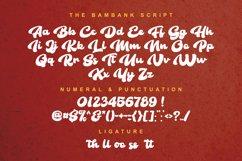 The Bambank Script - Retro Product Image 2
