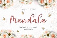 Web Font Mandala - Script Font Product Image 1