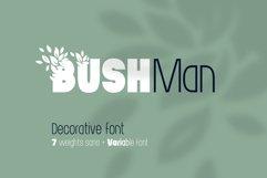 Bushman font set Product Image 1