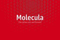 Molecula Product Image 1