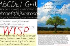 Wisp Product Image 2