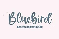 Bluebird - Handwritten Script Font Product Image 1