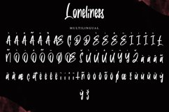 Loneliness   Brush Font Product Image 4