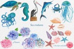 Watercolor Aquatic and Coastal Set Product Image 3