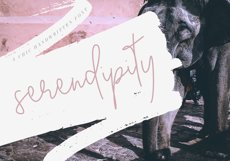Serendipity - Handwritten Font Product Image 1