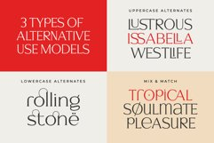 Signore - Serif Typeface Product Image 9