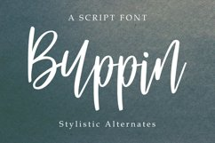 Buppin font Product Image 1