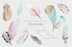 Watercolor Feathers Product Image 1