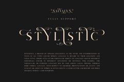 Salvalyn - Stylistic Serif Font Product Image 3