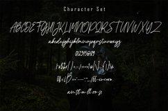 Francos Signature - Stylish Monoline Font Product Image 6