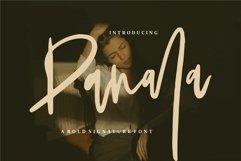 Panala - A Bold Signature Font Product Image 1