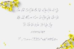 Bonita. Script font family. Product Image 6