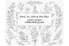 Hand drawn floral illustrations - botanical graphics lineart Product Image 3