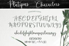 Platipus Script Product Image 5