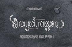 Snapdragon Product Image 1